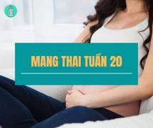 Những kiến thức mẹ cần biết khi mang thai tuần thứ 20