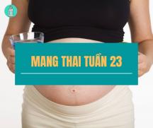 Những kiến thức quan trọng khi mang thai tuần thứ 23